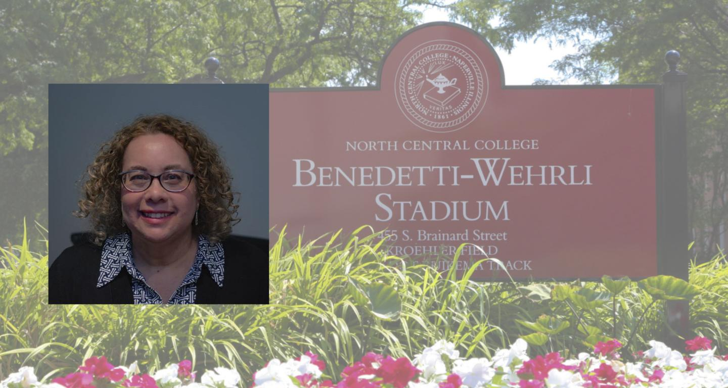 The new dean of the North Central School of Education and Health Sciences, Marci J. Swede.