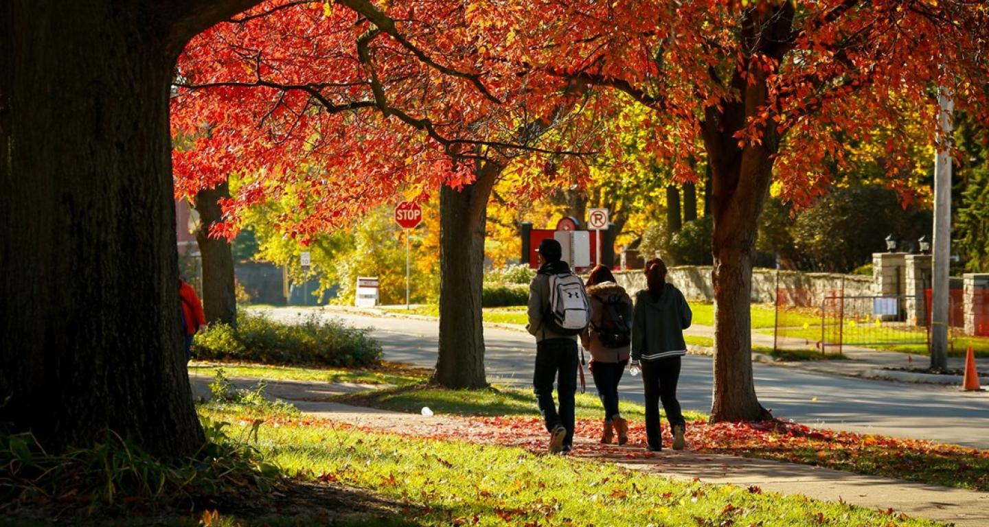 three students walking outside with fall leaves
