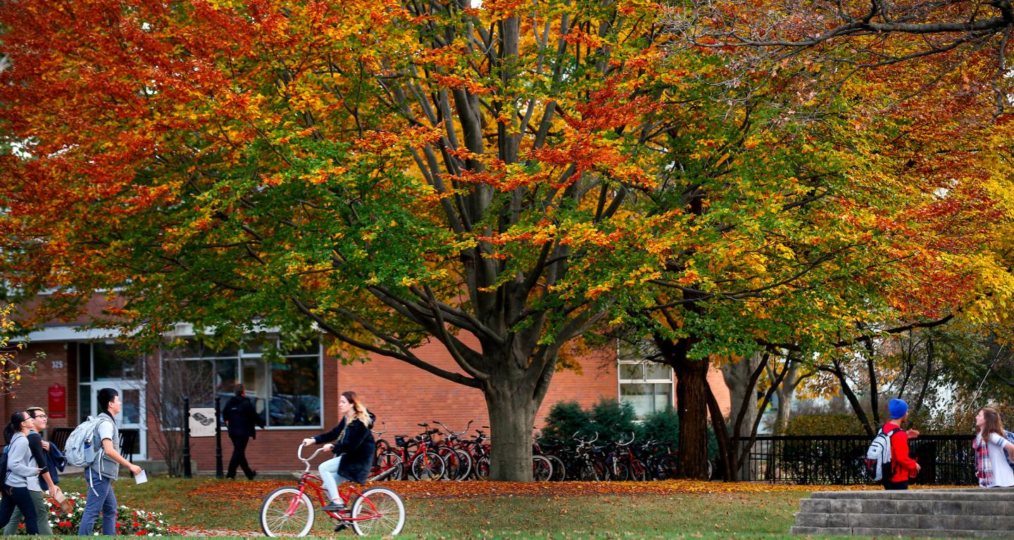 North Central College central campus in the fall