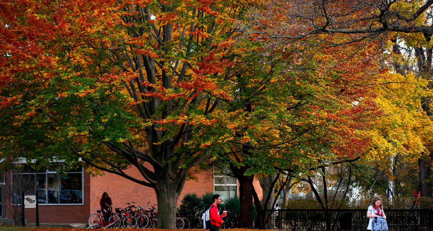 North Central College Campus in the Fall