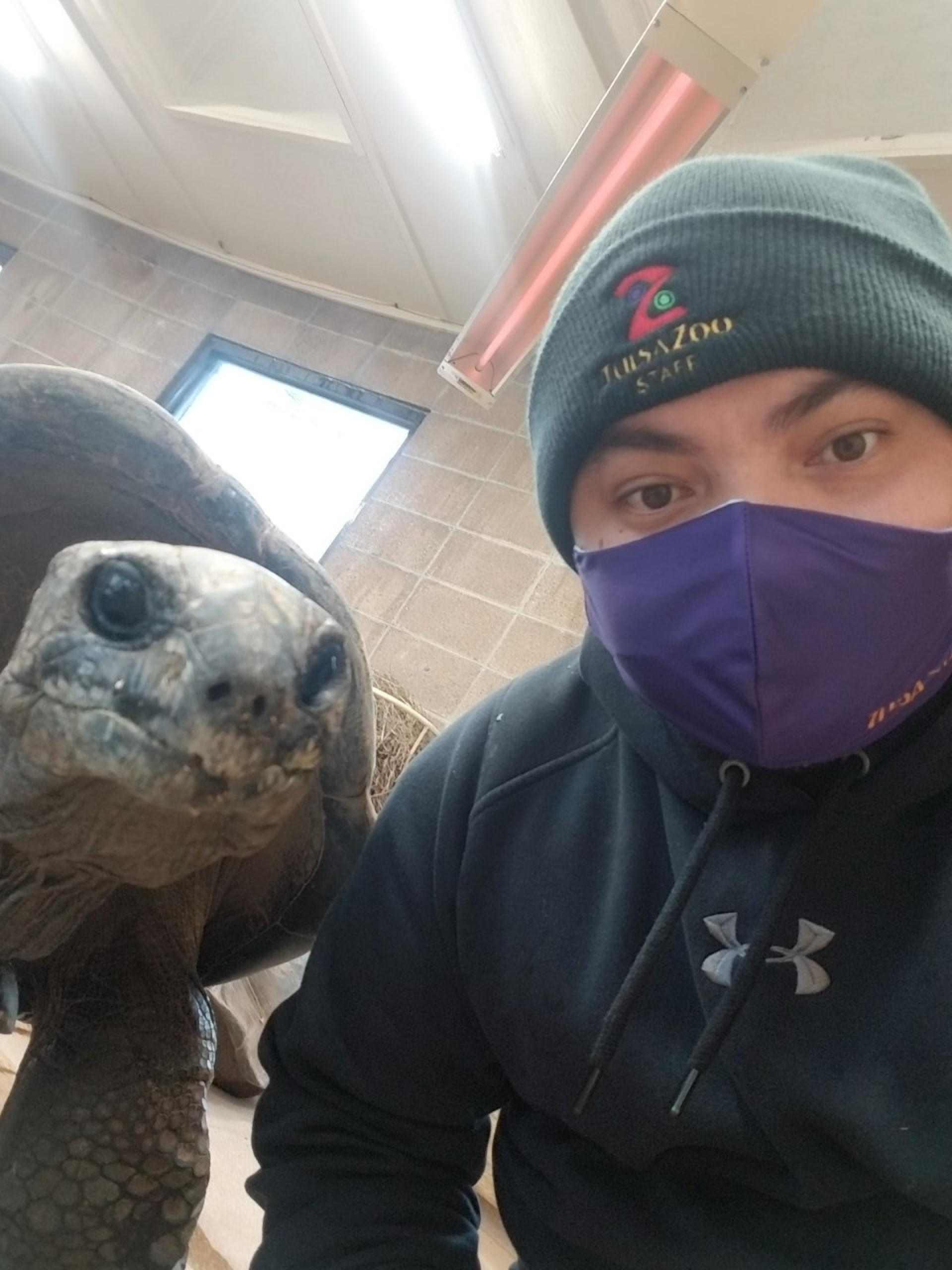 North Central College alumnus Eddie Exconde '20 poses with one of the giant tortoises he cares for at the Tulsa Zoo.