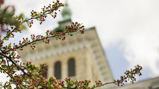 Old Main Building Tower on North Central College Campus