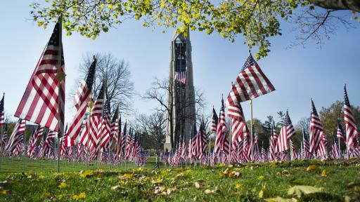 American flags at a memorial.